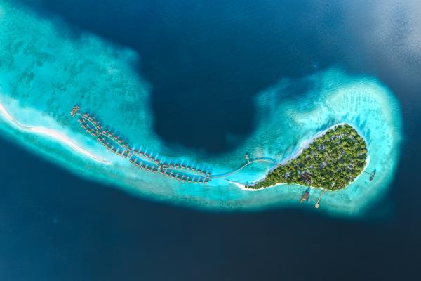 Joali Island Resort